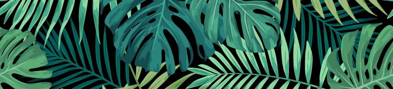 green-tropical-plants.jpg